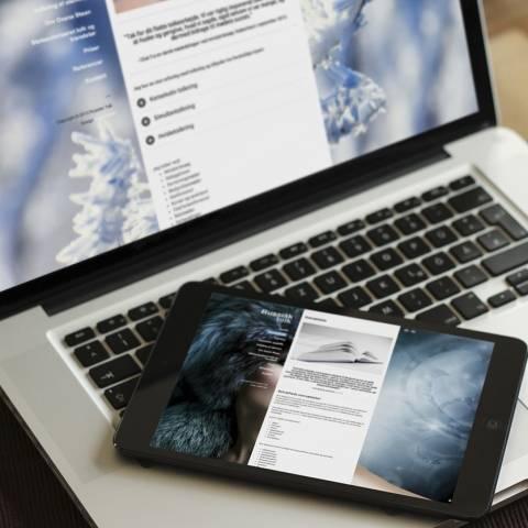 Webdesign: Helhedsindtrykket understreger budskabet
